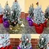Decoraţiuni de Crăciun