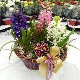 Aranjamente florale de 1-8 Martie